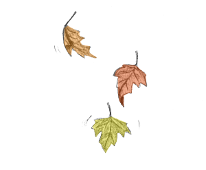 LEAVES-couple1-300x247