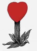 heart-p120
